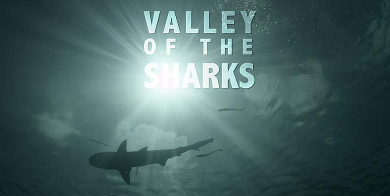 Valley of the Sharks